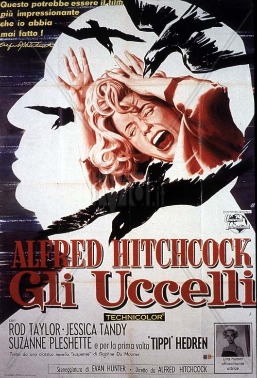 uccelli_rod_taylor_alfred_hitchcock_007_jpg_iuiq